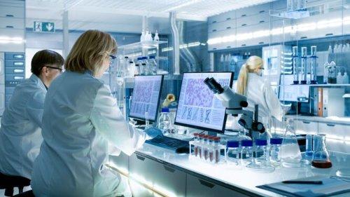 Astronomía y patología unen conocimientos para la inmunoterapia del cáncer