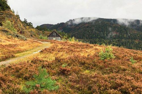 Wandern rund um Goslar mit Routenvorschlägen · Die Gradwanderung