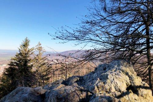 Wandern rund um Bad Harzburg mit Routenvorschlägen · Die Gradwanderung