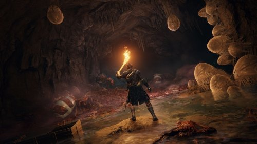 New Elden Ring plot synopsis sets the stage for a deeper Souls story