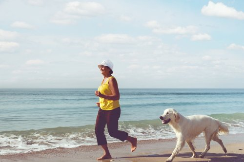 Why You Should Adopt A Pet When You Reach Retirement Age | PawTracks