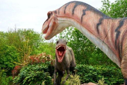 Insolite : Les 50 questions (et réponses) pour tout savoir sur les dinosaures