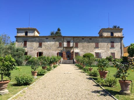 Vineyards in Tuscany: Stay at a Villa, Apartment, B&B and Agriturismo Surrounded by Vineyards