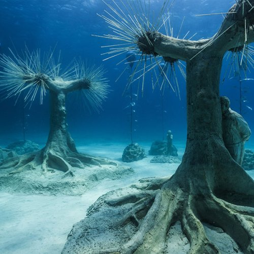 JASON DECAIRES TAYLOR'S UNDERWATER FOREST