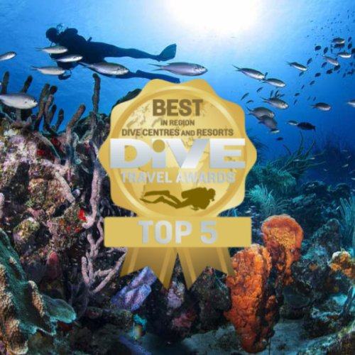 TOP 5 REGIONAL DIVE CENTRES AND RESORTS SO FAR
