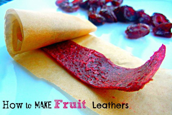 Learn to Make Healthy and Delicious Fruit Leathers