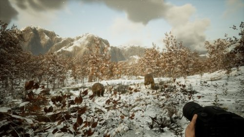 """""""Photography Simulator"""" is a video game designed to help you be a better wildlife photographer - DIY Photography"""