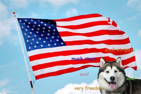 Dogs With Flags: Flag Of USA 🇺🇸