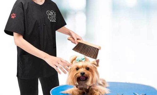 Top 12 Perfect Selections as The Best Dog Grooming Aprons And Smocks