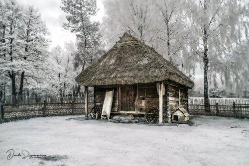 14 Gennaio 2021 - Dorota Szymonowicz - Top Selection Infrared