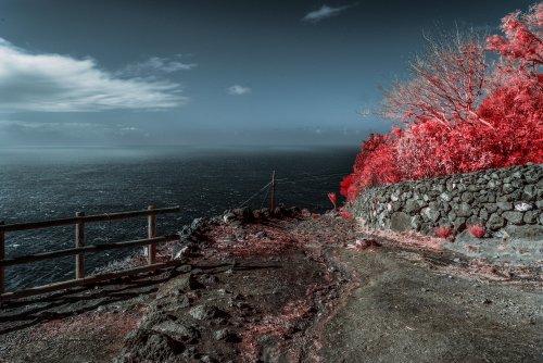 15 Gennaio 2021 - Dorota Szymonowicz - Top Selection Infrared
