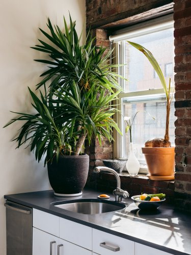 Where to Splurge vs. Save When it Comes to Renovating