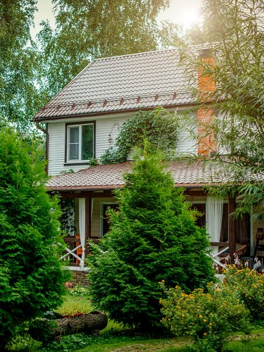 This Fairytale Lawn Alternative Could Save You $7K in the First Year Alone