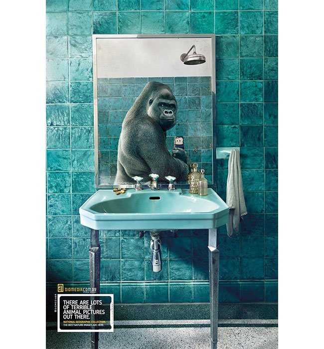 National Geographic's Animal Selfies - Digital Photo Magazine