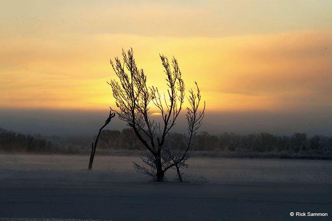 Sunrise & Sunset - Digital Photo Magazine