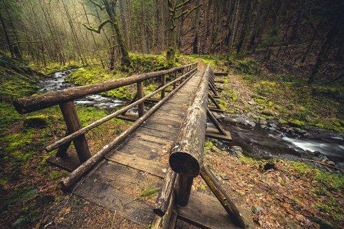 Lenses For Landscape Photography
