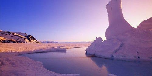 DNA-fressende Mikroorganismen in der Arktis entdeckt