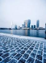 Rotterdam steht vor einem großen Wohnungsproblem