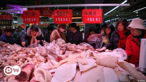 Africa Swine Fever: Is China downplaying another disease outbreak?