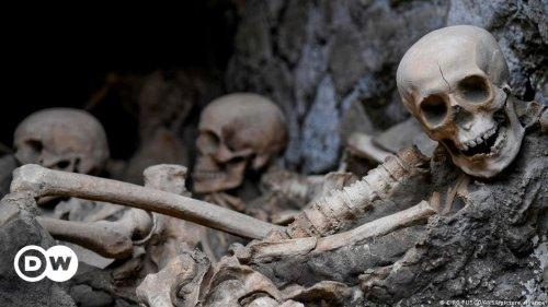 Aufregende Knochenfunde am Fuß des Vesuvs