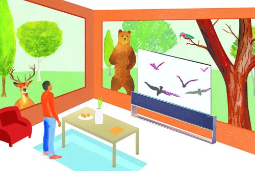 The Evolution of Whether and How to Hide Television Screens Comes Full Circle