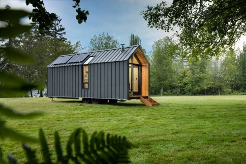 The DW by Modern Shed