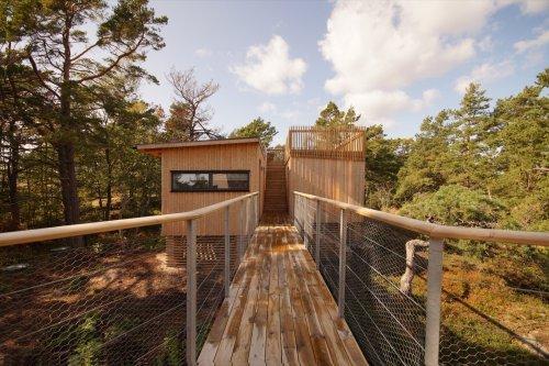 Articles about idyllic swedish summerhouse on Dwell.com