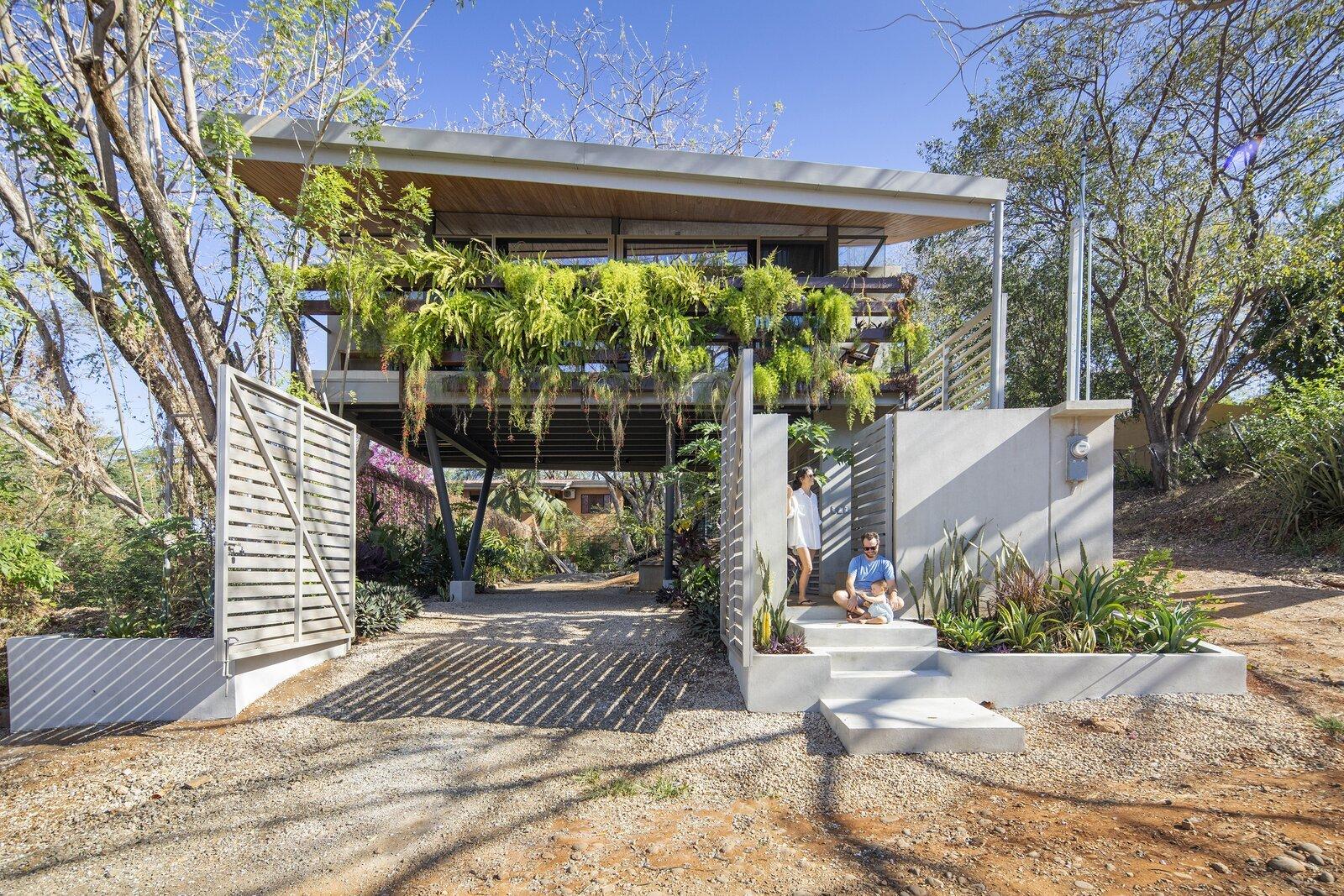 Casa Jardin by LSD Architects