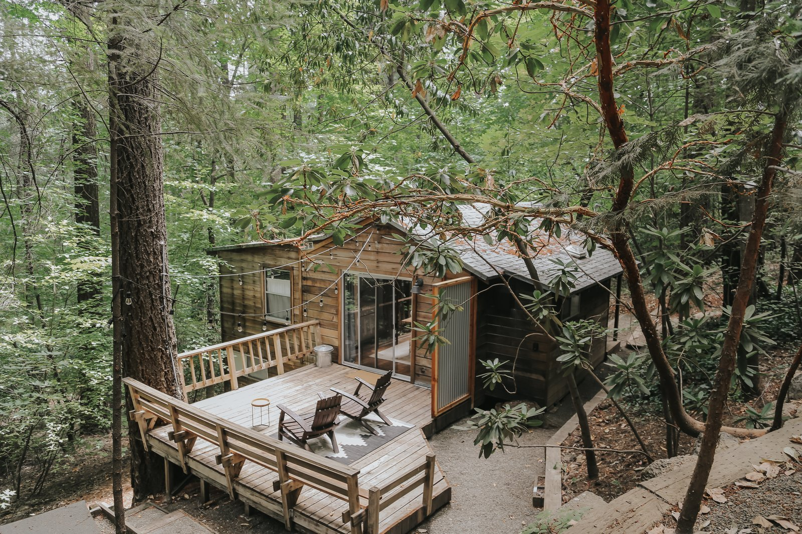 """Top """"Before & After"""" Modern Cabin Renovations"""