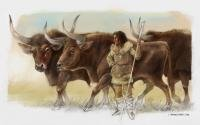 The DNA of three aurochs found next to the Elba shepherdess opens up a new enigma for palaeontology