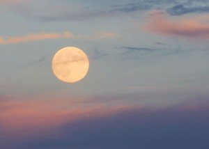 All you need to know: 2020's Harvest Moon | EarthSky.org