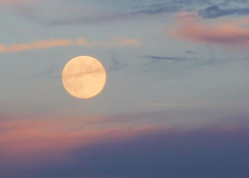 All you need to know: 2020's Harvest Moon | Astronomy Essentials | EarthSky
