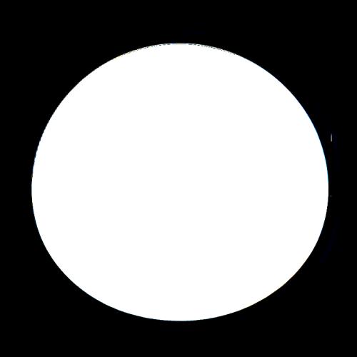Photosynthesis in Venus' atmosphere?