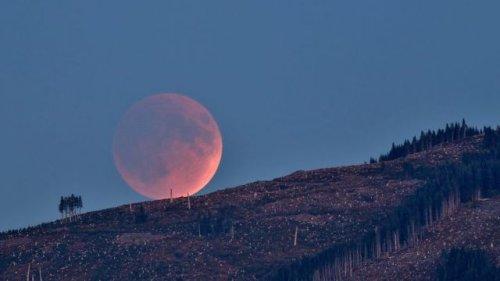Partial lunar eclipse of November 19, 2021