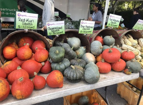 The Best Farmers Market in Every State