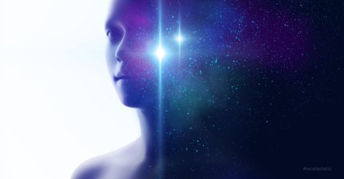 The Mental Universe Hypothesis: Reconnecting to Your Cosmic Self