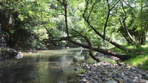 Medio Ambiente inicia un expediente sancionador contra Petronor por un vertido de crudo en el río Barbadún, en Muskiz