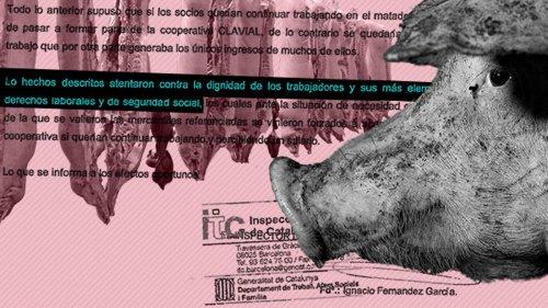 La dura realidad de los mataderos españoles