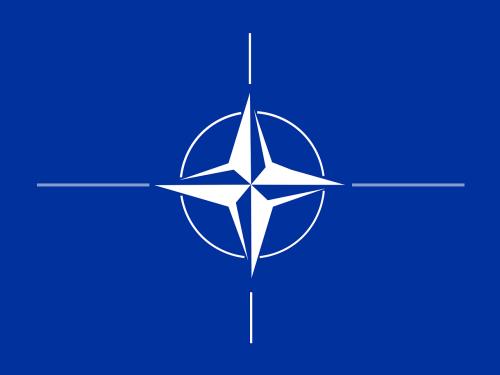 ¿Qué es la Organización del Tratado del Atlántico Norte (OTAN)?