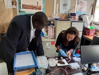 Hallada la tumba más antigua de África, con los restos de un niño fallecido hace 78.000 años