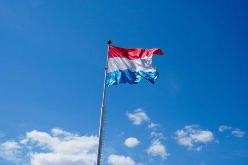 Luxemburgo: el Primer País Europeo en Legalizar el Uso y Autocultivo de Marihuana