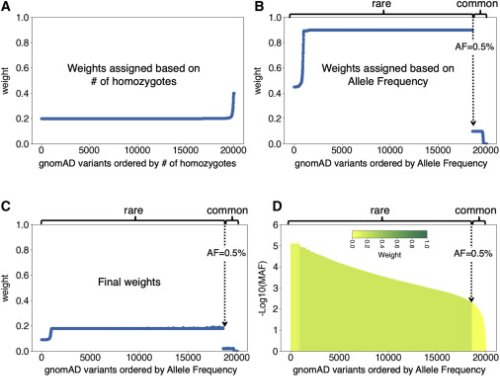 Improved pathogenicity prediction for rare human missense variants