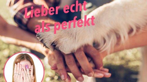Hund anschaffen vs. Kinder kriegen