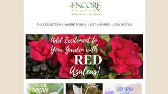 Encore Azalea Newsletters