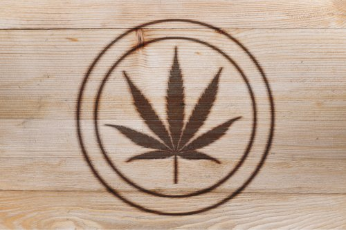 Does Branding Really Matter in the Future for Cannabis Products?