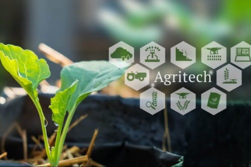 Should Agritech Startups Revamp Tech Solutions Amid COVID-19 Pandemic?