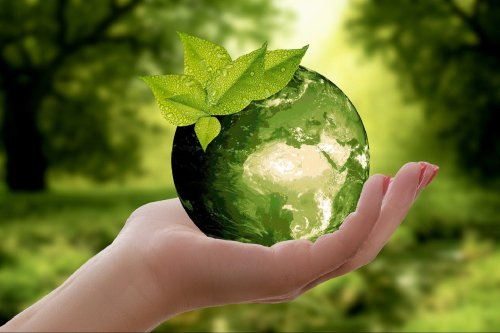 Five Indian Startups Making Earth Greener