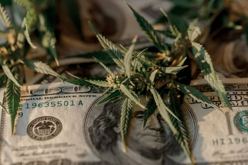Illinois Makes More Money from Cannabis Taxes than It Does from Liquor Taxes