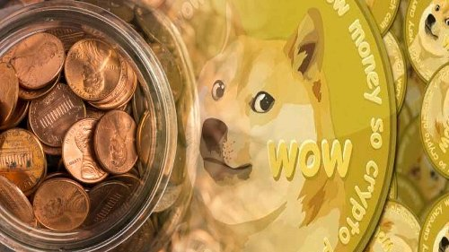 Penny Stocks to Watch on As DOGE Coin Skyrockets