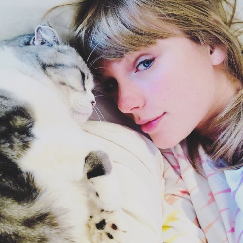 Taylor Swift Sets the Record Straight on Rumors Her Cat Meredith Is Missing